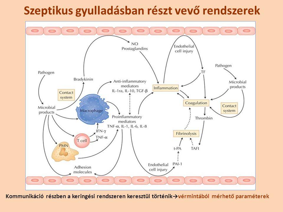 Szeptikus gyulladásban részt vevő rendszerek
