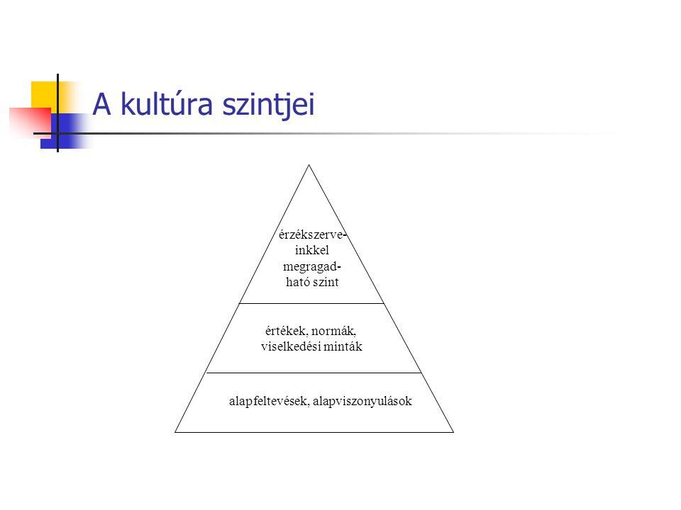 A kultúra szintjei érzékszerve- inkkel megragad- ható szint