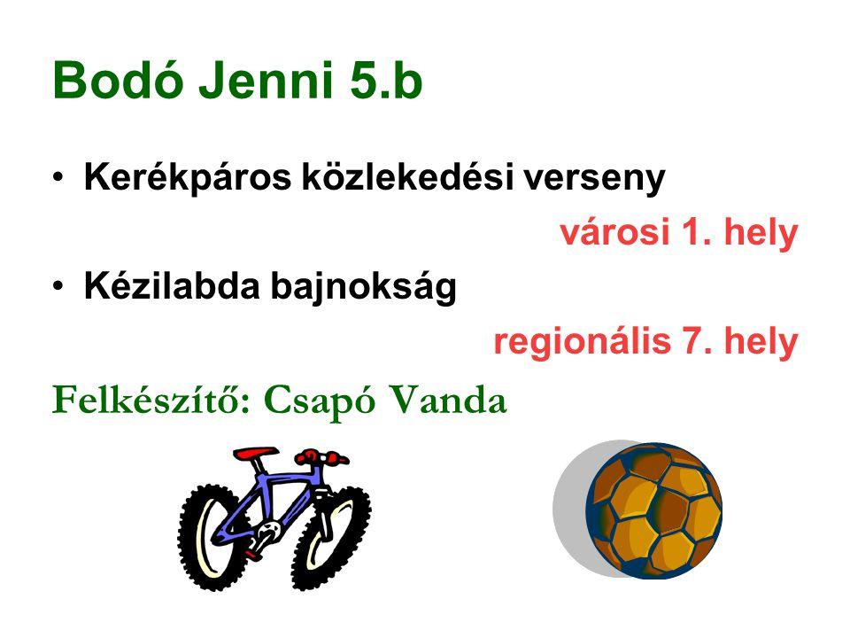Bodó Jenni 5.b Felkészítő: Csapó Vanda Kerékpáros közlekedési verseny