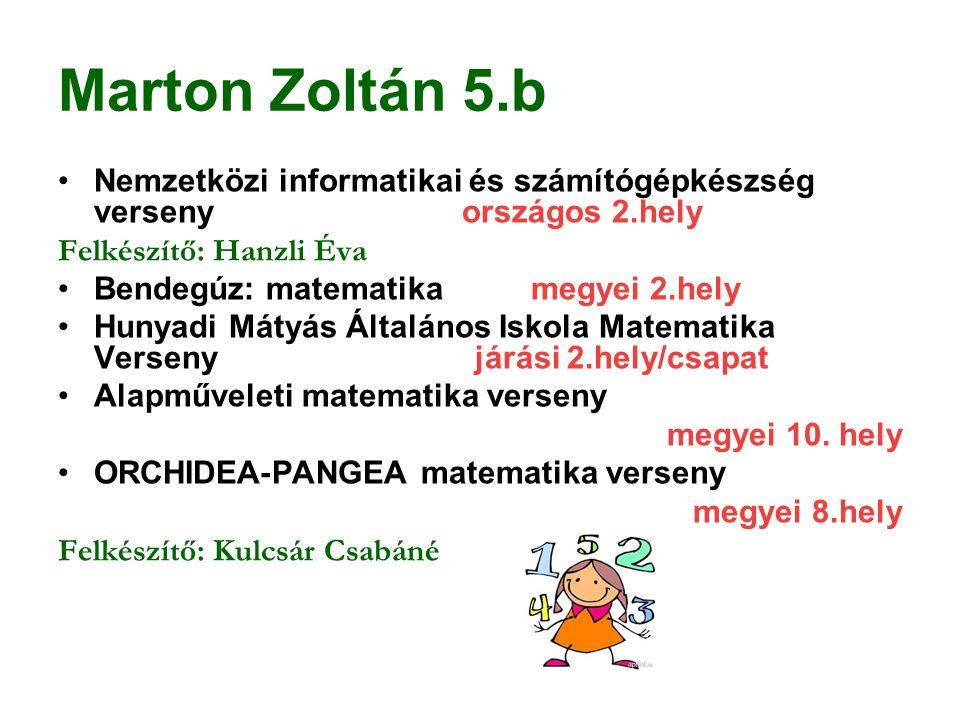 Marton Zoltán 5.b Nemzetközi informatikai és számítógépkészség verseny országos 2.hely.