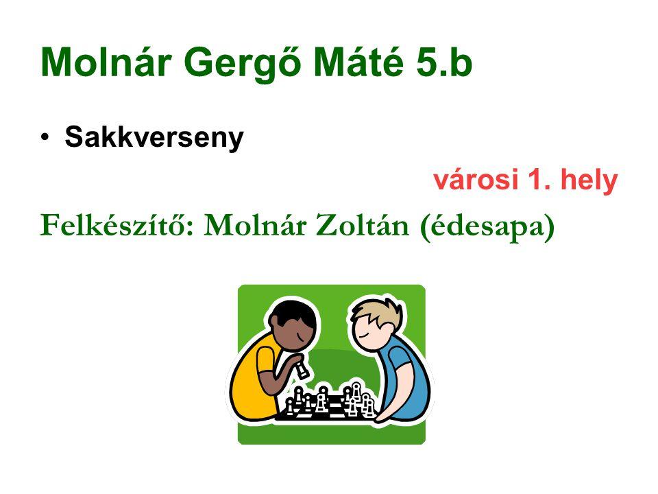 Molnár Gergő Máté 5.b Felkészítő: Molnár Zoltán (édesapa) Sakkverseny