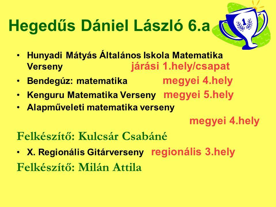 Hegedűs Dániel László 6.a