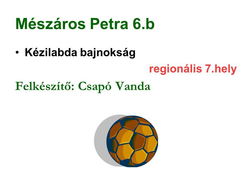 Mészáros Petra 6.b Felkészítő: Csapó Vanda Kézilabda bajnokság