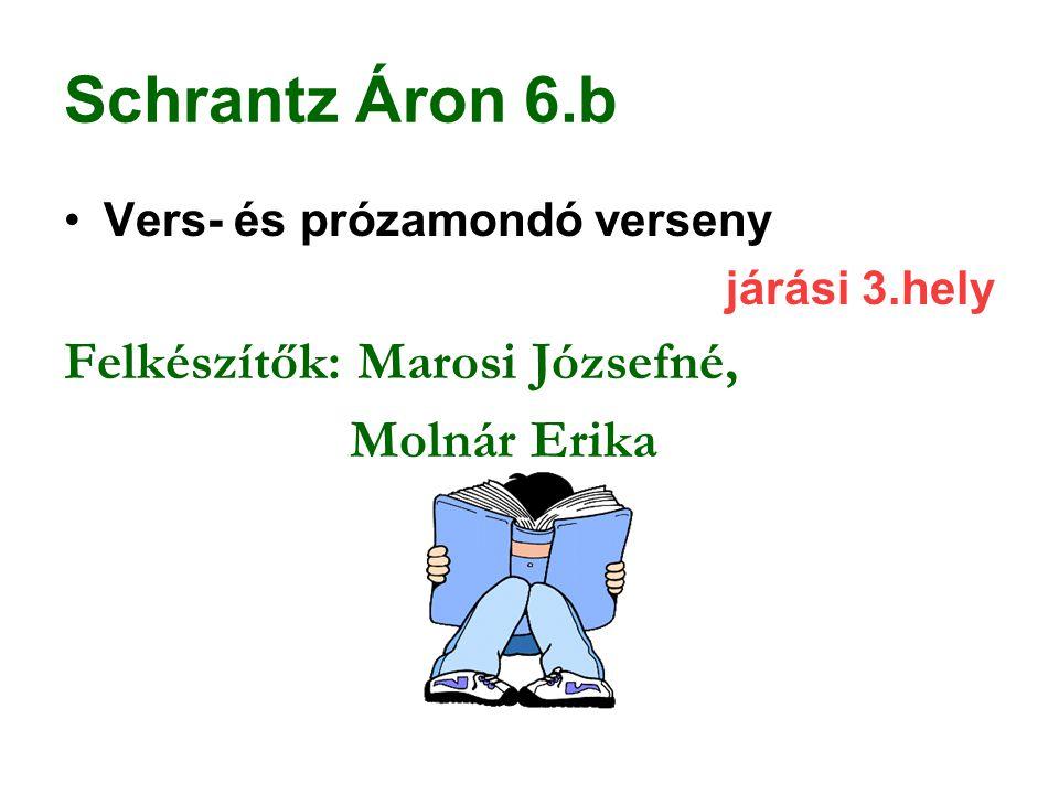 Schrantz Áron 6.b Felkészítők: Marosi Józsefné, Molnár Erika