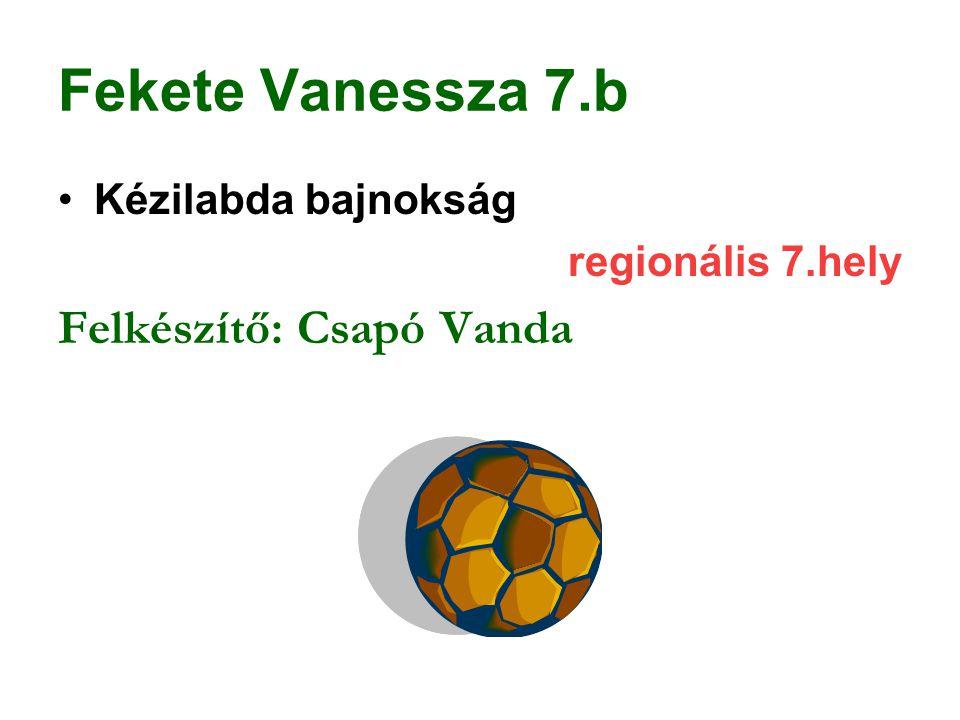 Fekete Vanessza 7.b Felkészítő: Csapó Vanda Kézilabda bajnokság