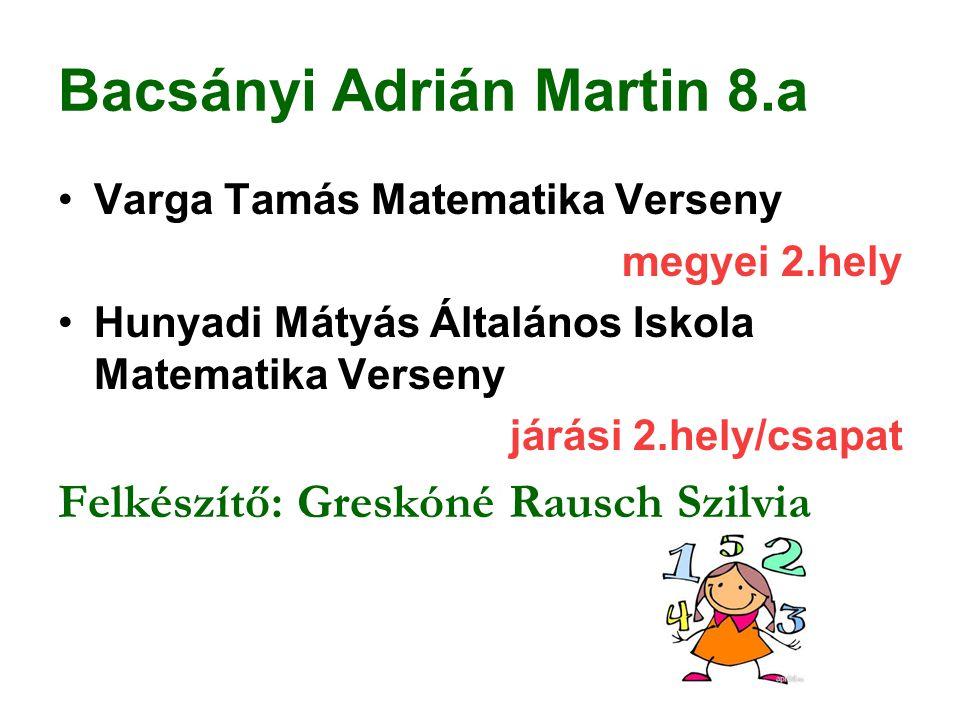 Bacsányi Adrián Martin 8.a