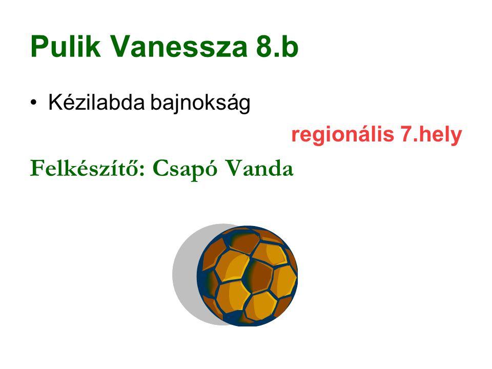 Pulik Vanessza 8.b Felkészítő: Csapó Vanda Kézilabda bajnokság
