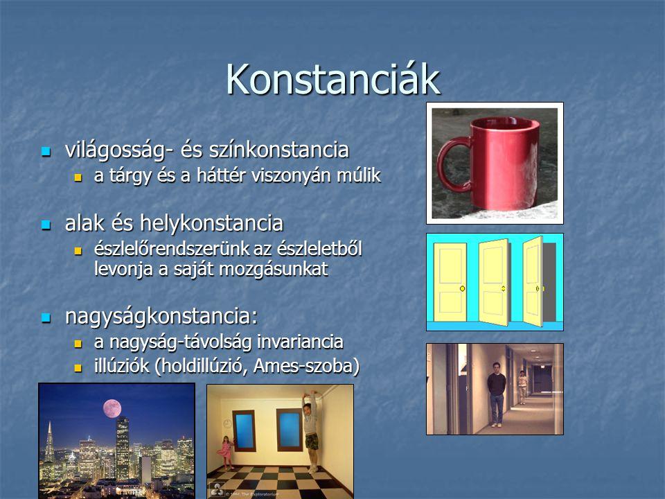 Konstanciák világosság- és színkonstancia alak és helykonstancia