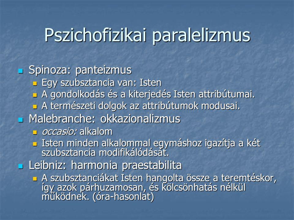 Pszichofizikai paralelizmus