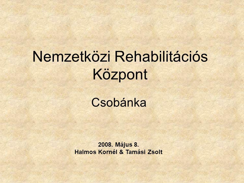 Nemzetközi Rehabilitációs Központ
