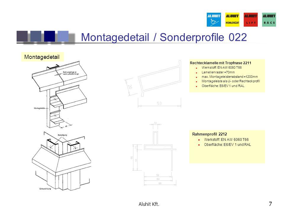 Montagedetail / Sonderprofile 022