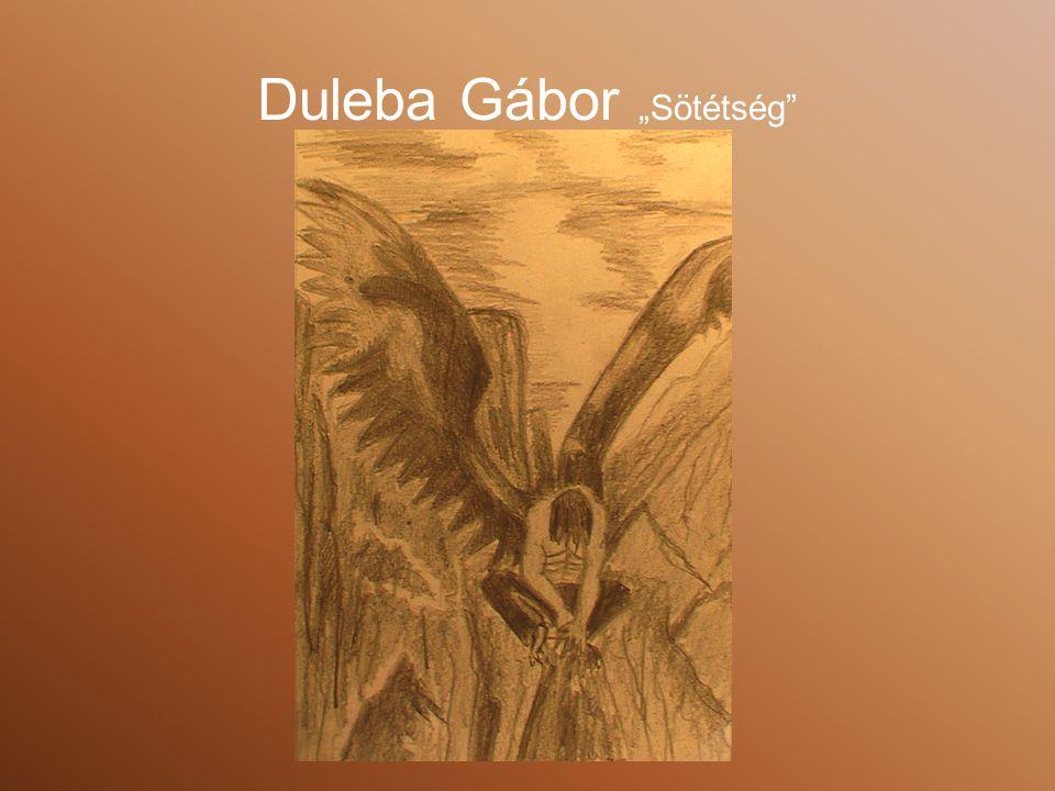 "Duleba Gábor ""Sötétség"