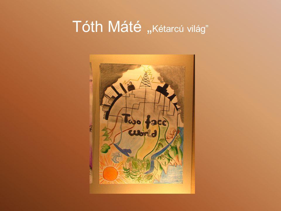 """Tóth Máté """"Kétarcú világ"""