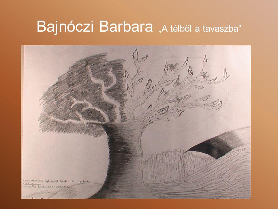 """Bajnóczi Barbara """"A télből a tavaszba"""