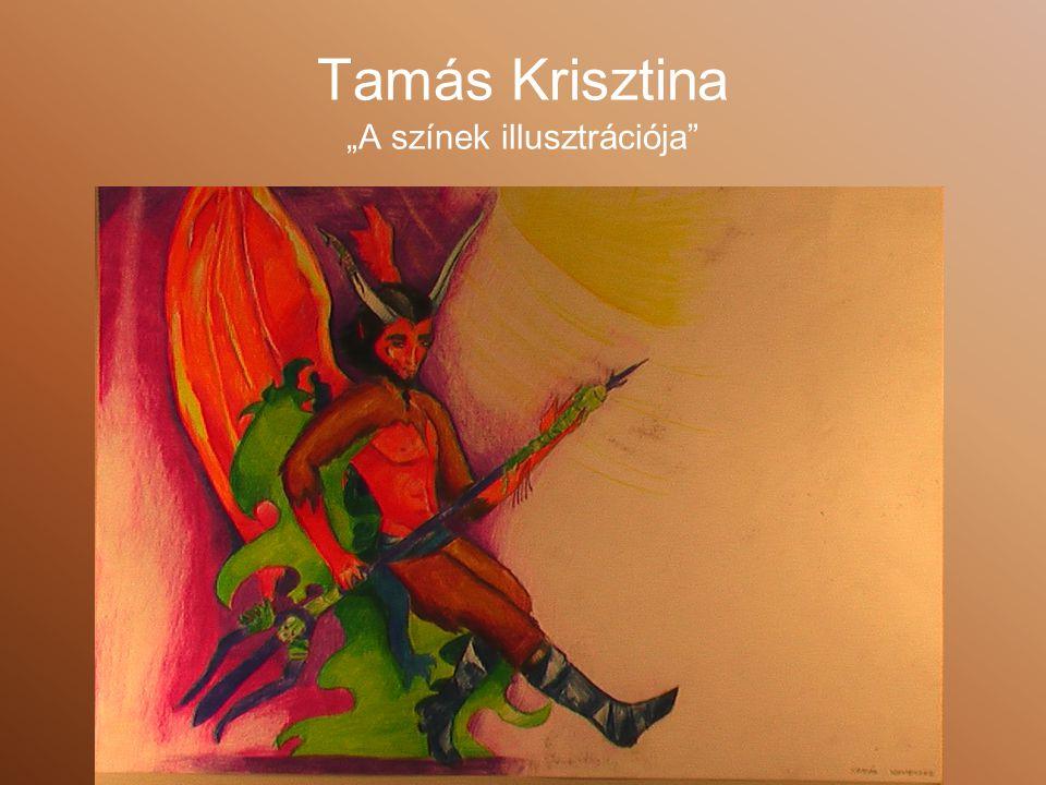 """Tamás Krisztina """"A színek illusztrációja"""