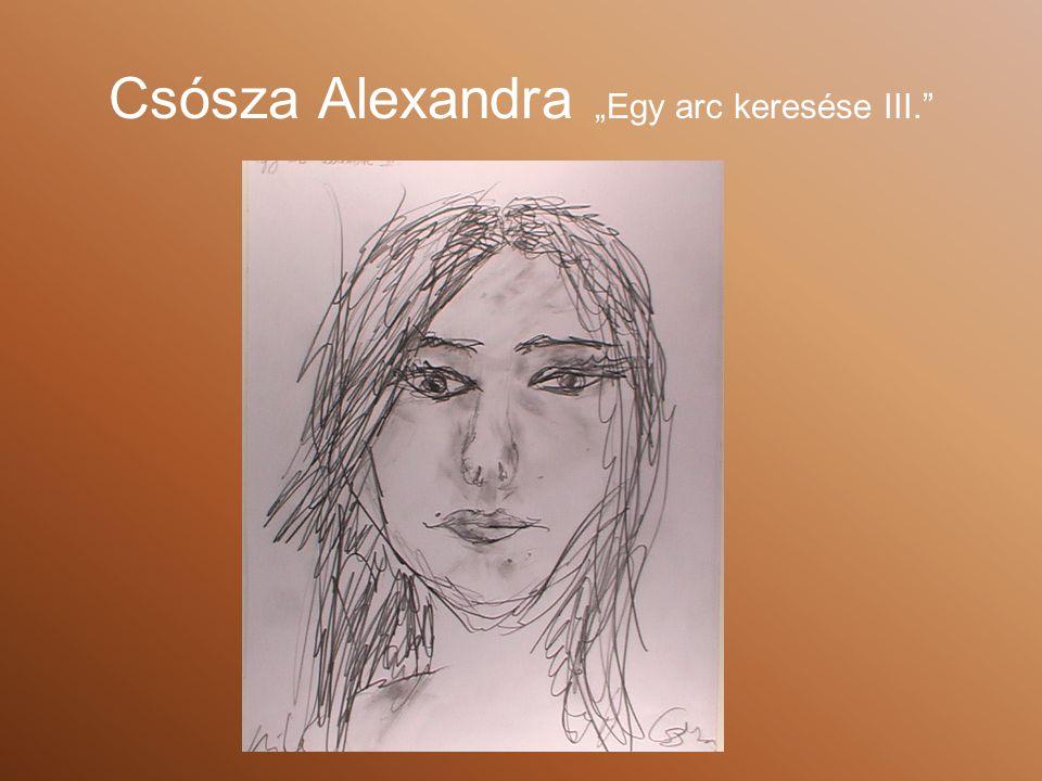 """Csósza Alexandra """"Egy arc keresése III."""