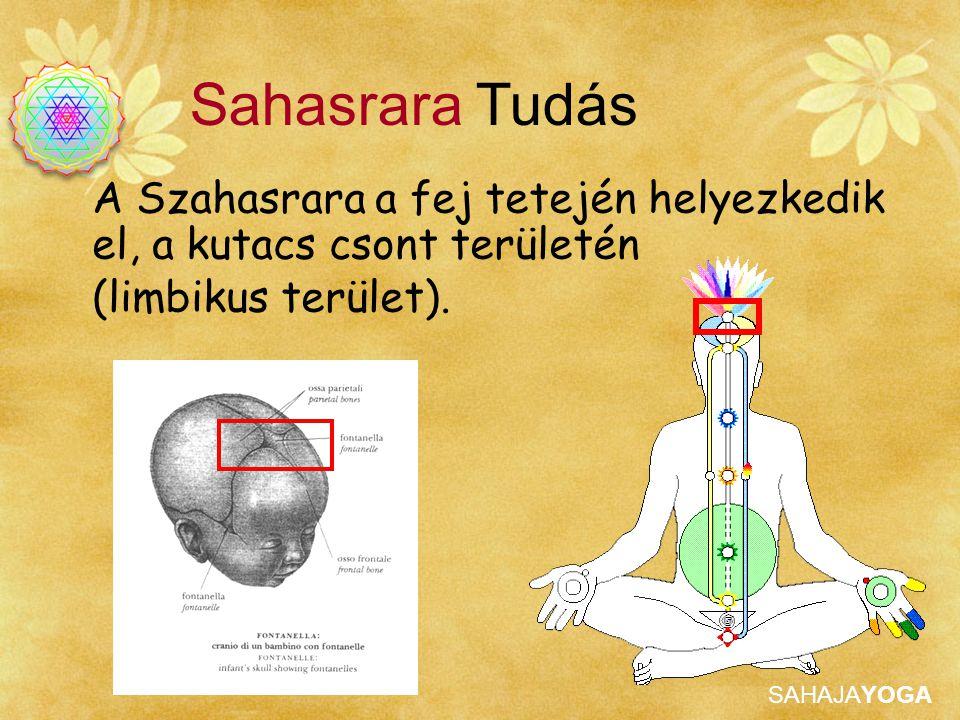 Sahasrara Tudás A Szahasrara a fej tetején helyezkedik el, a kutacs csont területén.