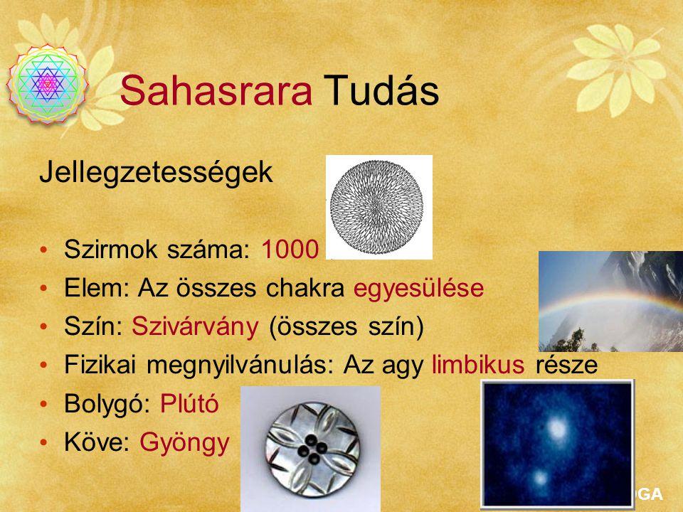 Sahasrara Tudás Jellegzetességek Szirmok száma: 1000