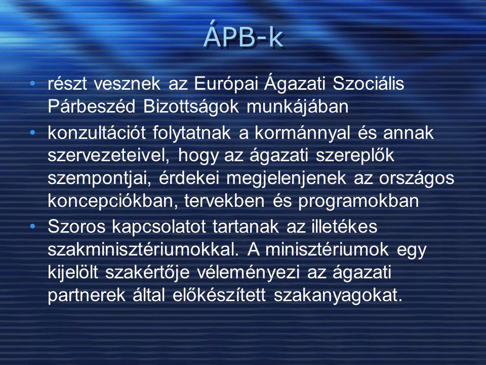 ÁPB-k részt vesznek az Európai Ágazati Szociális Párbeszéd Bizottságok munkájában.