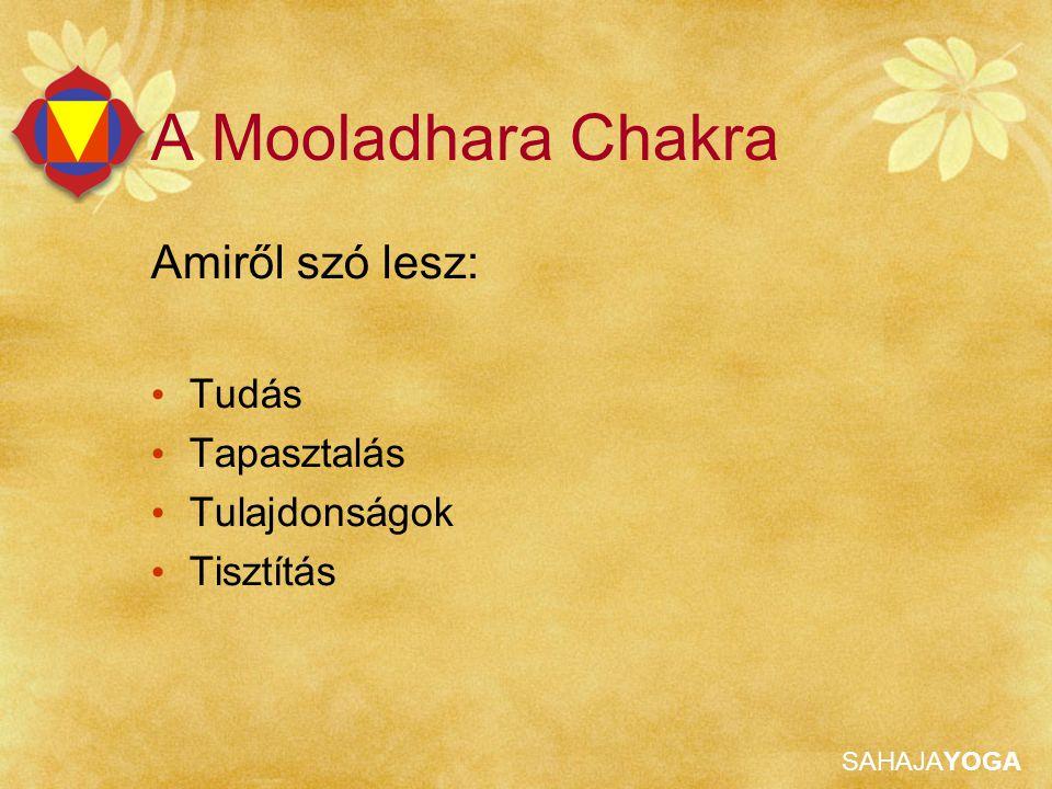 A Mooladhara Chakra Amiről szó lesz: Tudás Tapasztalás Tulajdonságok