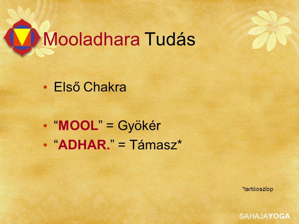 Mooladhara Tudás Első Chakra MOOL = Gyökér ADHAR. = Támasz*