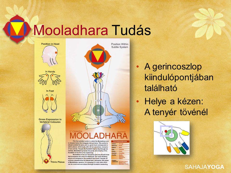 Mooladhara Tudás A gerincoszlop kiindulópontjában található