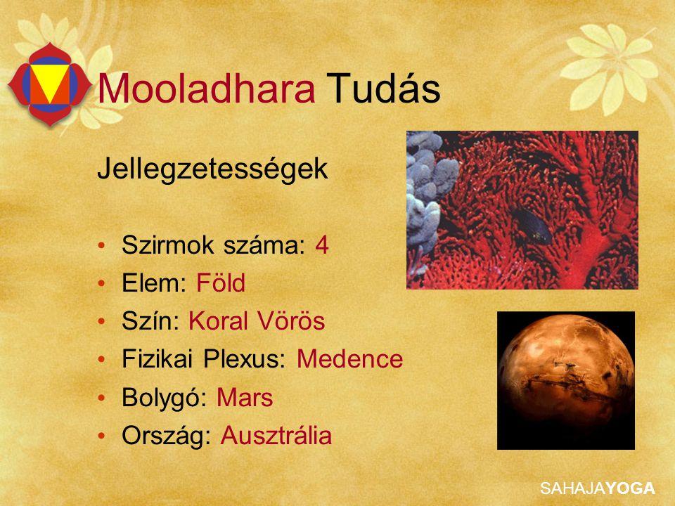 Mooladhara Tudás Jellegzetességek Szirmok száma: 4 Elem: Föld
