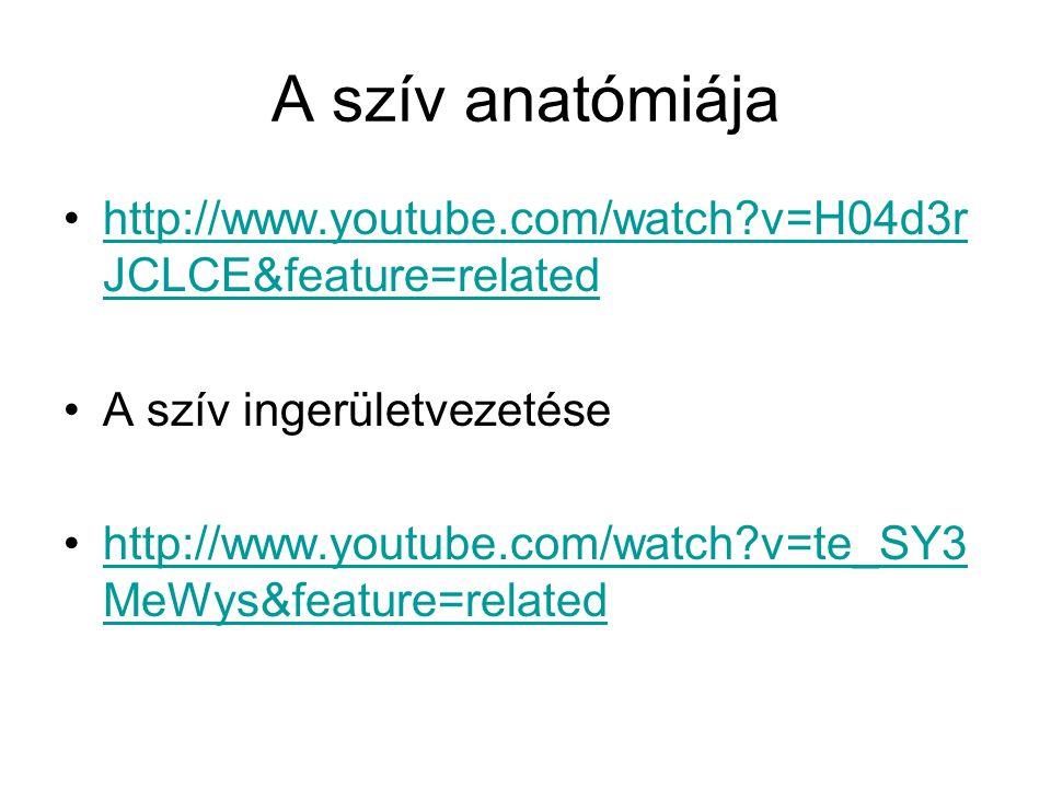 A szív anatómiája http://www.youtube.com/watch v=H04d3rJCLCE&feature=related. A szív ingerületvezetése.