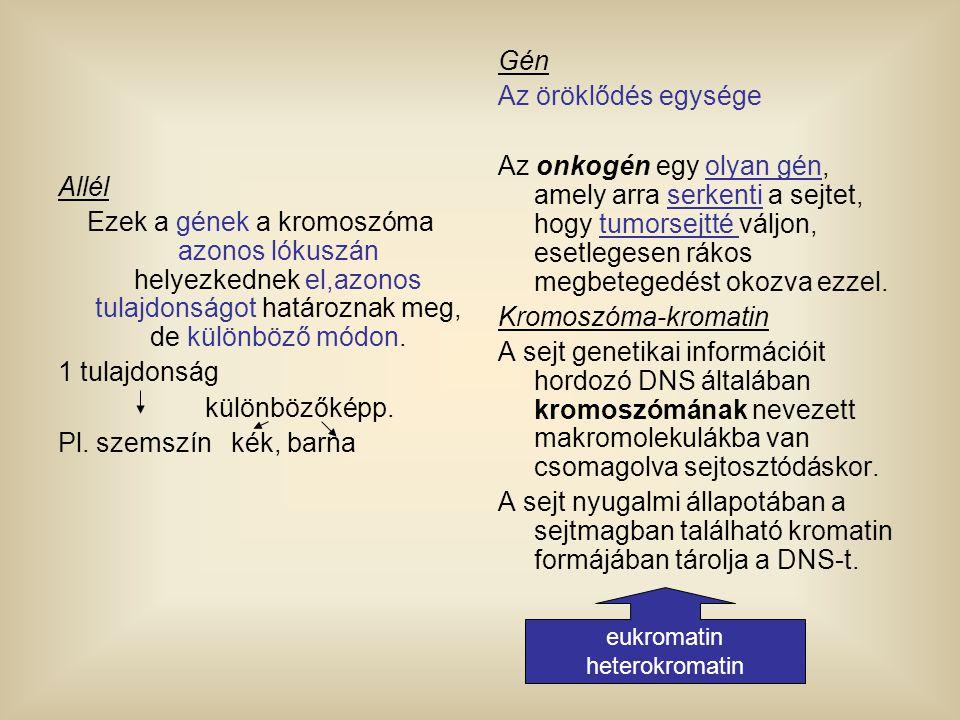 Gén Az öröklődés egysége