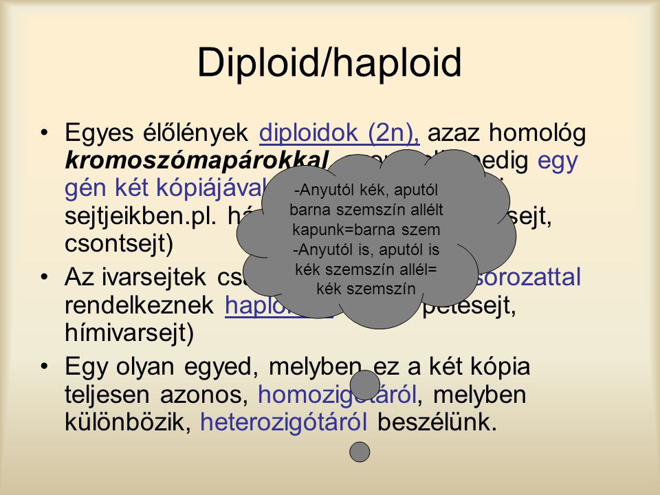 Diploid/haploid