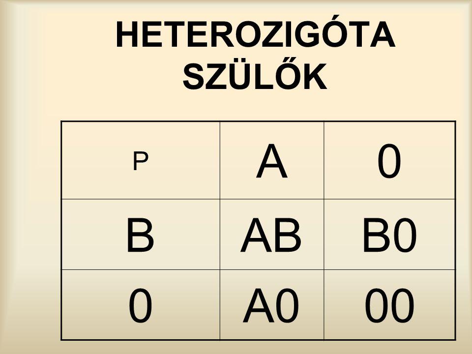 HETEROZIGÓTA SZÜLŐK P A B AB B0 A0 00