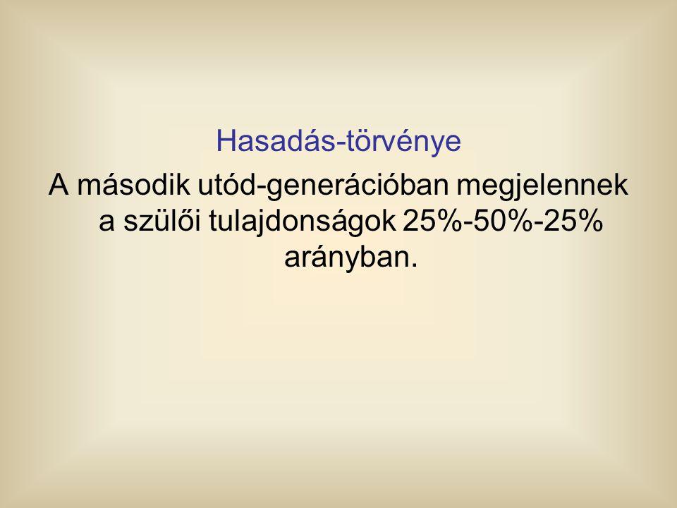 Hasadás-törvénye A második utód-generációban megjelennek a szülői tulajdonságok 25%-50%-25% arányban.