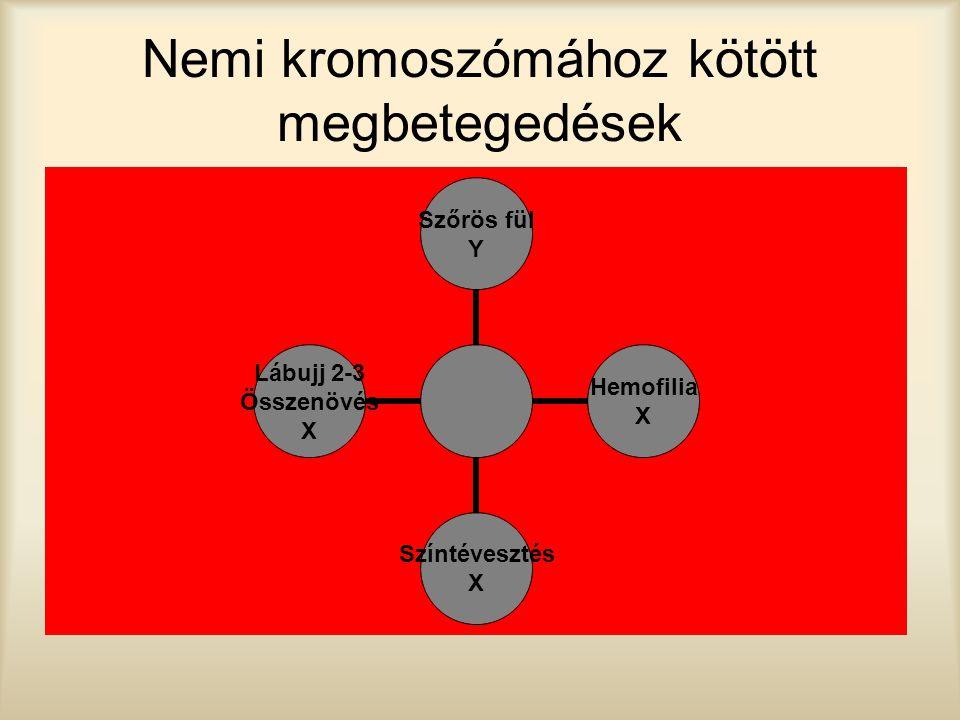 Nemi kromoszómához kötött megbetegedések