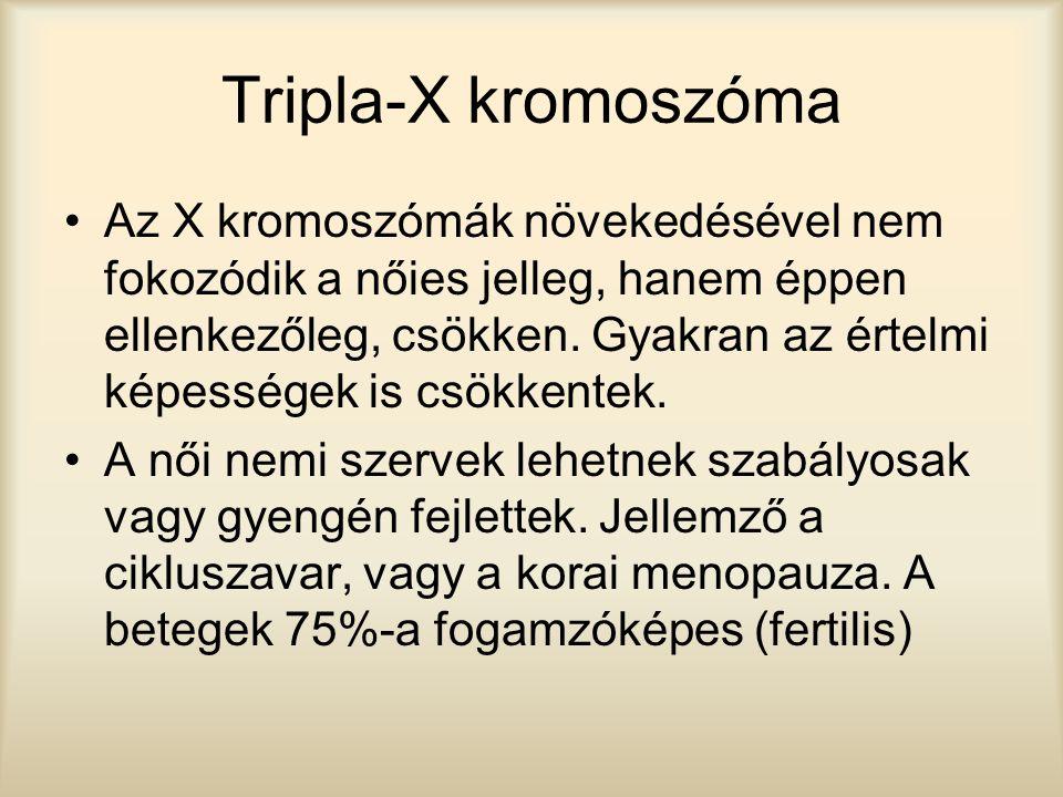 Tripla-X kromoszóma