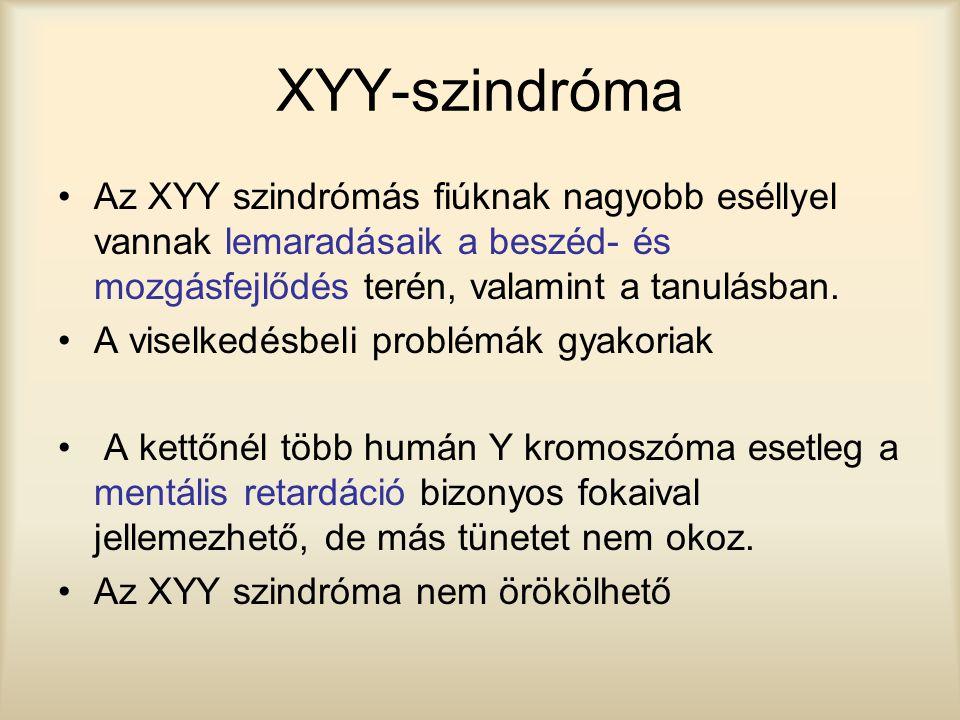 XYY-szindróma Az XYY szindrómás fiúknak nagyobb eséllyel vannak lemaradásaik a beszéd- és mozgásfejlődés terén, valamint a tanulásban.