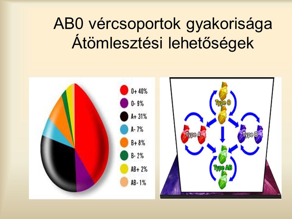 AB0 vércsoportok gyakorisága Átömlesztési lehetőségek