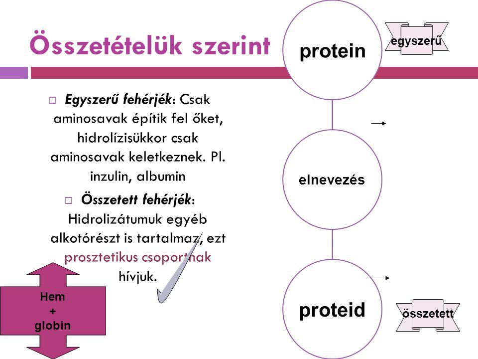 elnevezés protein. proteid. Összetételük szerint. egyszerű.