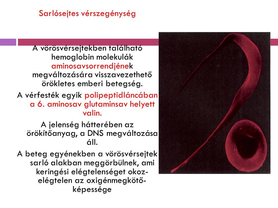 Sarlósejtes vérszegénység