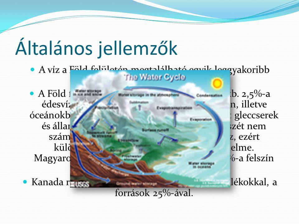 Általános jellemzők A víz a Föld felületén megtalálható egyik leggyakoribb anyag, a földi élet alapja.