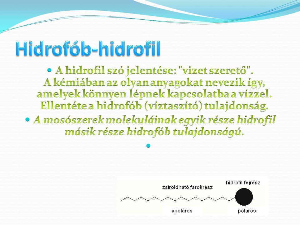 Hidrofób-hidrofil
