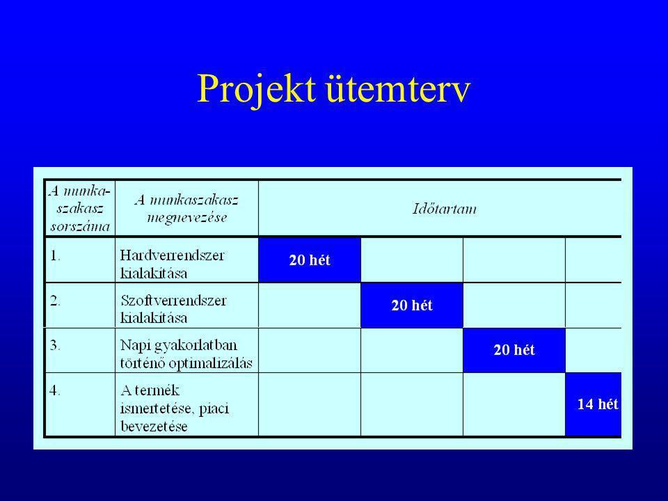 Projekt ütemterv
