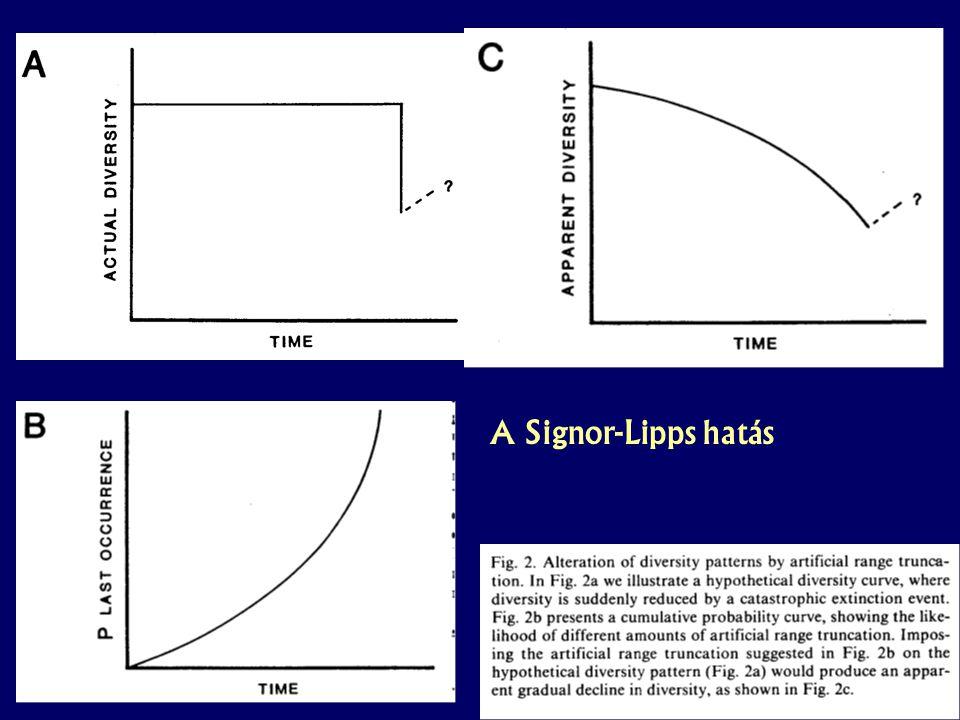 A Signor-Lipps hatás Paleobiológia speci – 2. hét