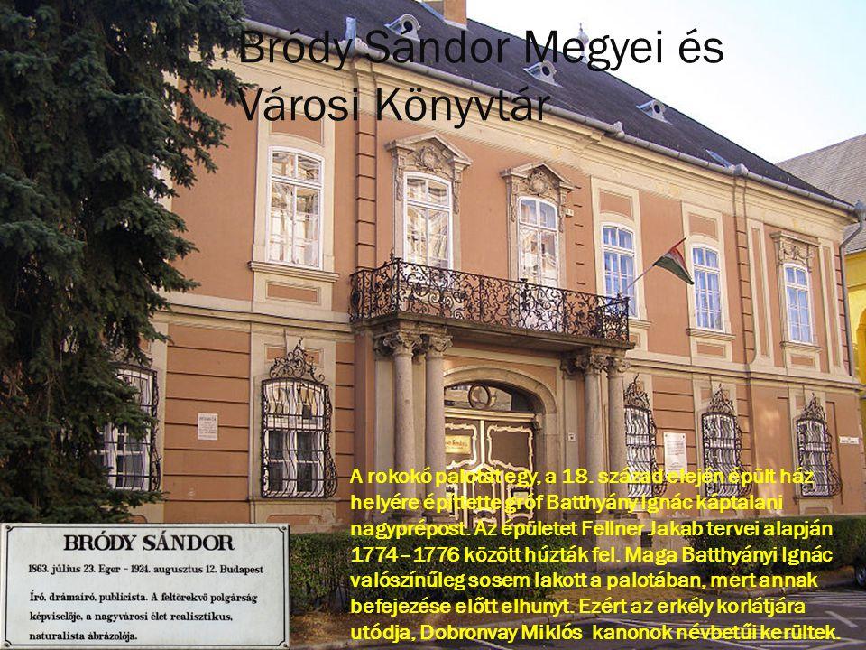 Bródy Sándor Megyei és Városi Könyvtár