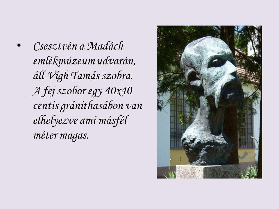 Csesztvén a Madách emlékmúzeum udvarán, áll Vígh Tamás szobra