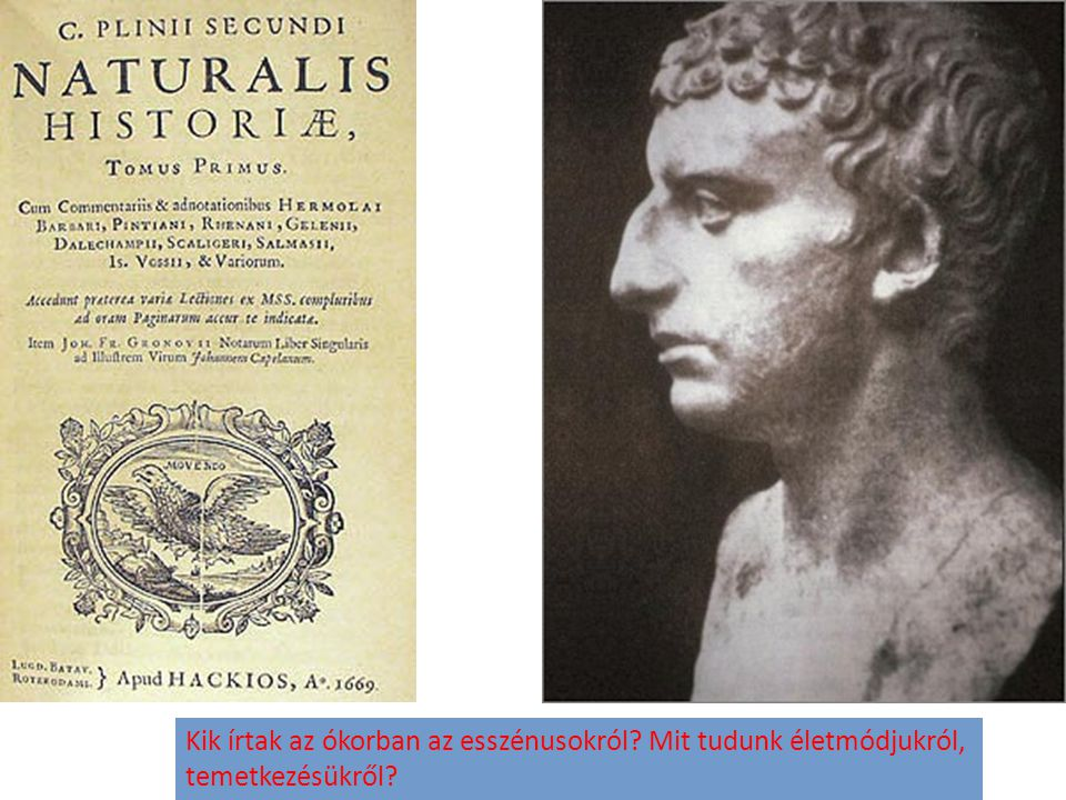 Kik írtak az ókorban az esszénusokról