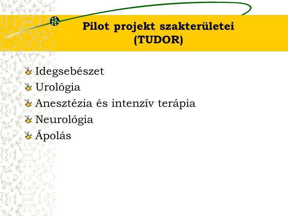 Pilot projekt szakterületei (TUDOR)