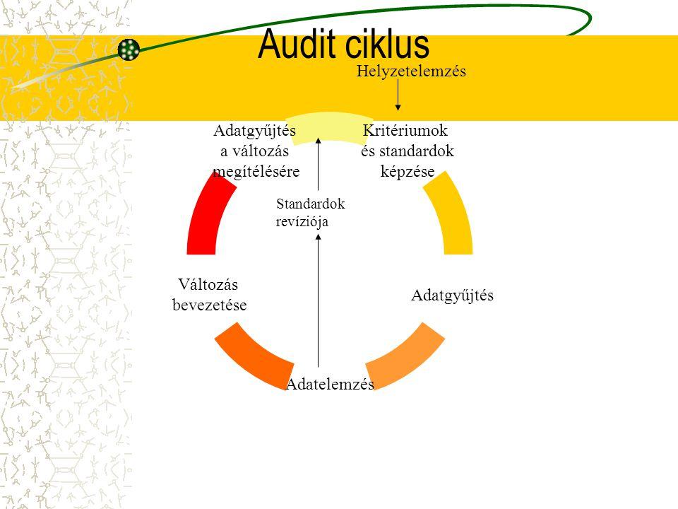 Audit ciklus Helyzetelemzés Standardok revíziója