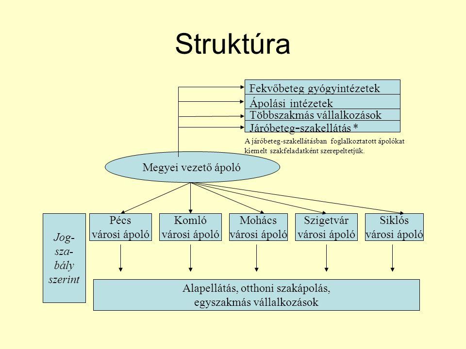 Struktúra Fekvőbeteg gyógyintézetek Ápolási intézetek