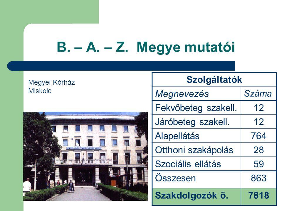 B. – A. – Z. Megye mutatói Szolgáltatók Megnevezés Fekvőbeteg szakell.