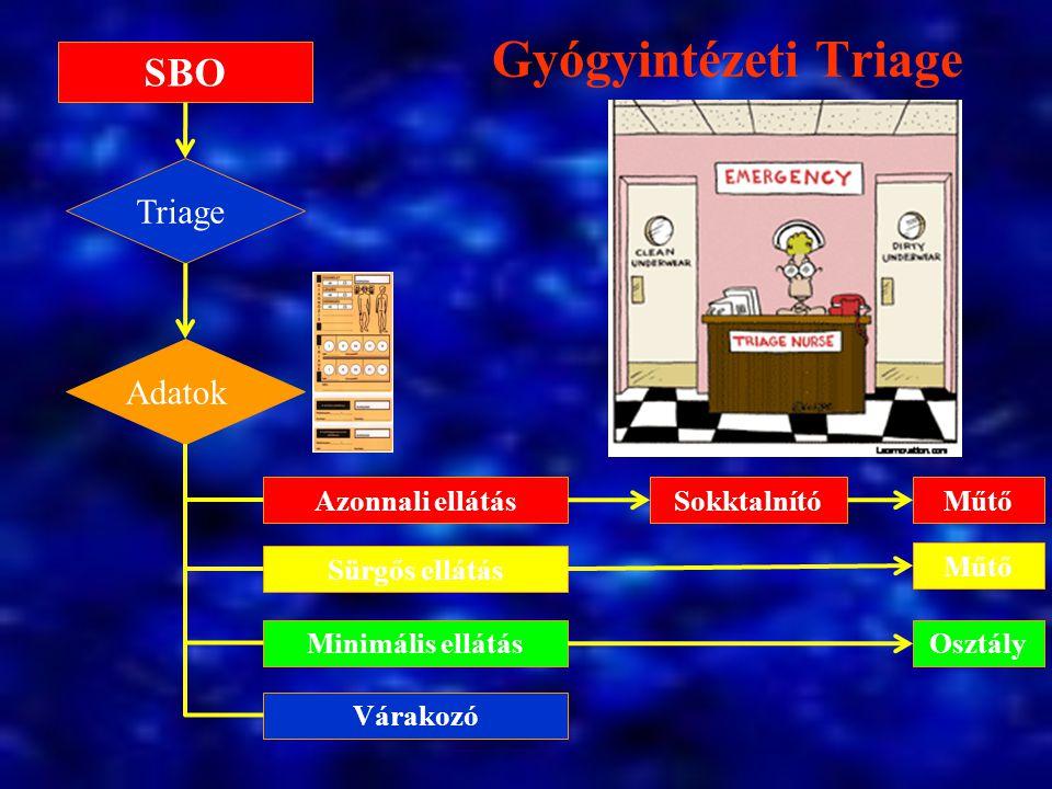 Gyógyintézeti Triage SBO Triage Adatok Azonnali ellátás Sokktalnító